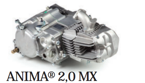 Daytona anima motor (MX 2.0) 150/190