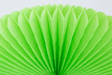 tissue paper fan lime green