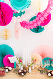 honeycomb and tissue paper decorations
