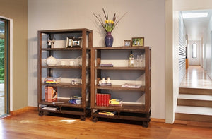 Living room bookcase and cabinet