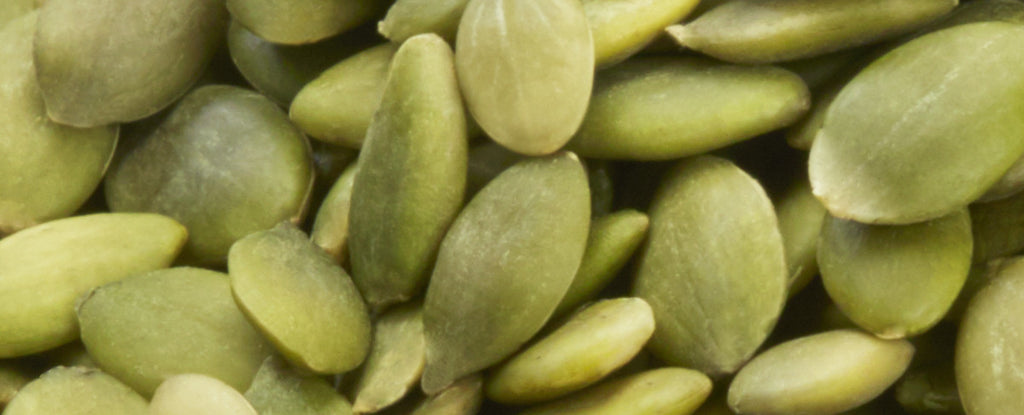 The Power and Nutritional Benefits of Seeds
