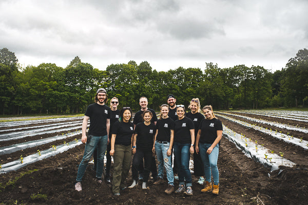 88 Acres team standing in front of rows of kabocha squash they just planted.