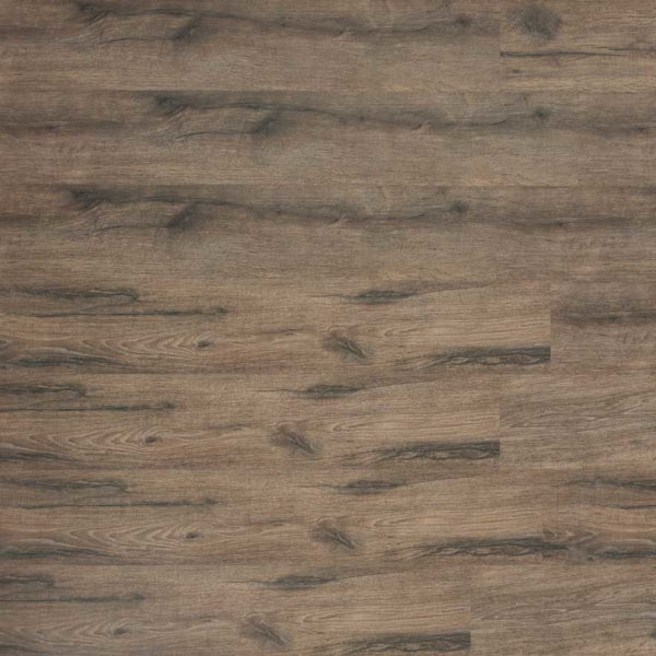 ASHBORO - American Heritage Collection - Laminate Flooring by Infinity Floors - Laminate by Infinity Floors