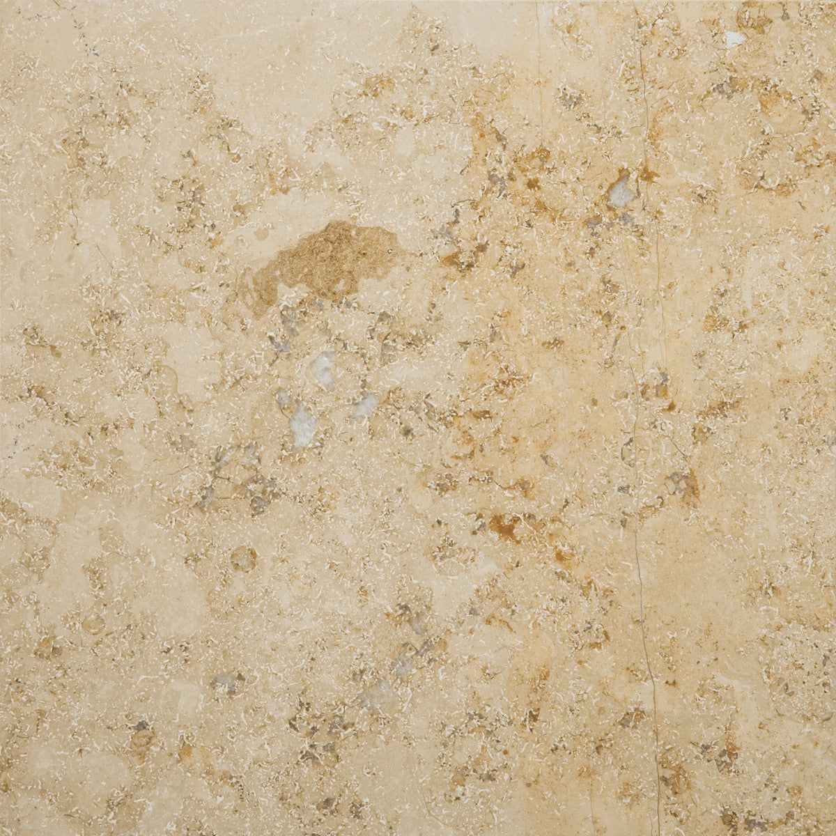 Limestone limestone tile by emser tile the flooring factory limestone limestone tile by emser tile doublecrazyfo Gallery