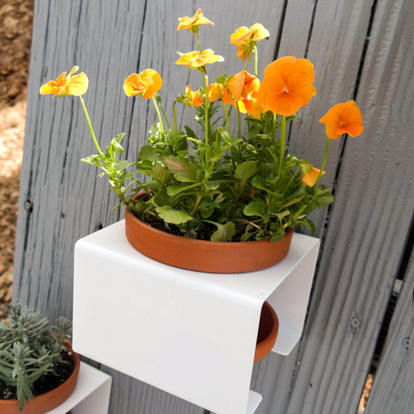 Wall to Table Planters