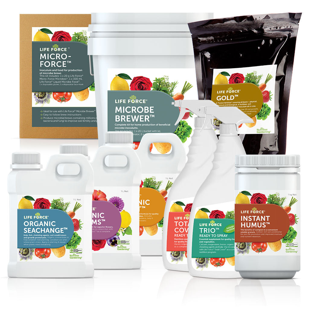 The Life Force® Box