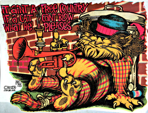 1974 Ain't Free Country 70s Vintage t-shirt iron-on transfer nos retro Cat Can't Blow tee patch