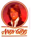 andy gibb, bee gees, vintage, t-shirt, iron-on, 70s, band tees, nos