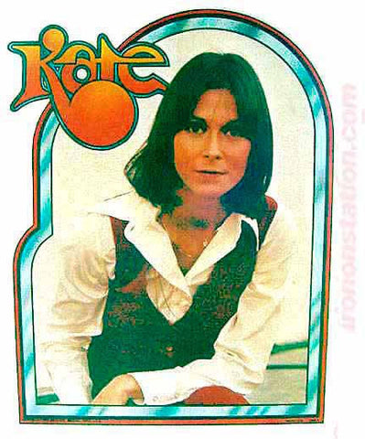 kate jackson, sabrina, charlies angels, vintage, 70s, t-shirt, iron-on