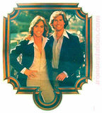 1970s HARDY BOYS Shaun Cassidy Parker Stevenson 70s Vintage TV Iron On tee shirt transfer Original Authentic nos retro