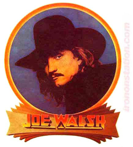 JOE WALSH Eagles Vintage 70s Rock Concert Iron On tee shirt transfer Original Authentic retro