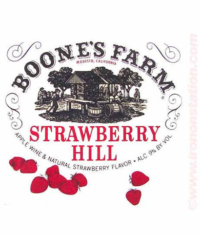 BOONE'S FARM Crash with Pride Strawberry Hill Vintage Iron On tee shirt transfer Original Authentic deadstock Nos 70s booze