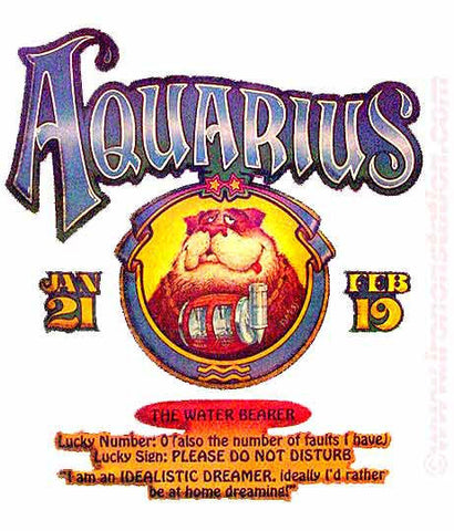 ASTROLOGY AQUARIUS Vintage 70s t-shirt iron-on retro zodiac tee shirt iron on transfer