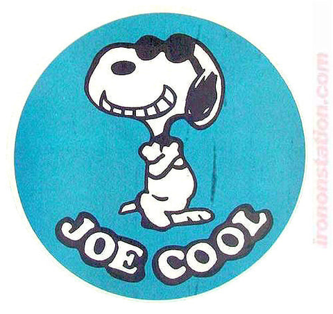 "Peanuts Snoopy ""Joe Cool"" Vintage 70s Iron On tee shirt transfer Original Authentic animation cartoon"