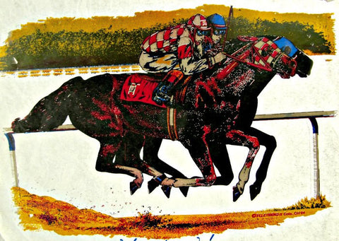 horse, track, racing, race, jockey, 70s, vintage, t-shirt, iron-on, derby, thoroughbred