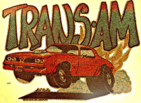 vintage, trans am, t-shirt, iron-on, diy, american fashion,