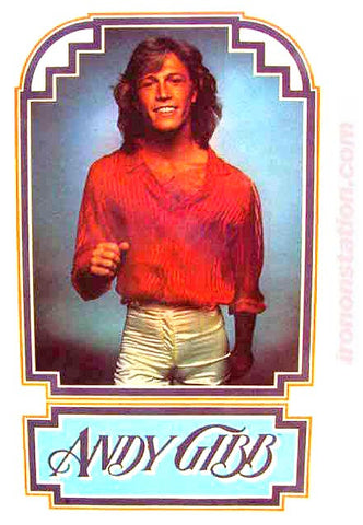 andy gibb, bee gees, vintage, 70s, t-shirt, iron-on, band tees,