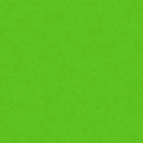 8'X8' Green Screen Rag