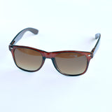 All Time Wayfarer Sunglasses