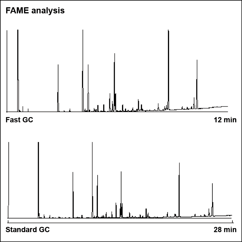 Fatty acid methyl esters (FAMEs) analysis