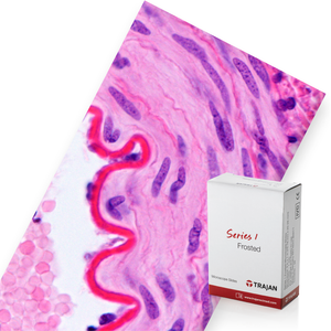 Trajan Series 1 Frosted Microscope Slides