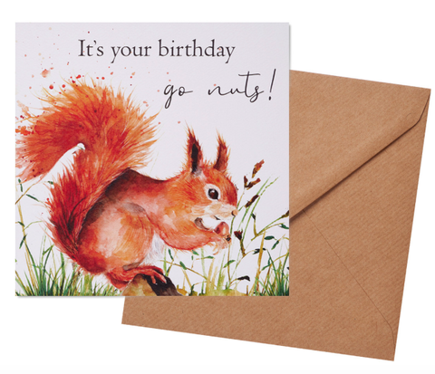 Greetings Card - Squirrel Birthday 10376