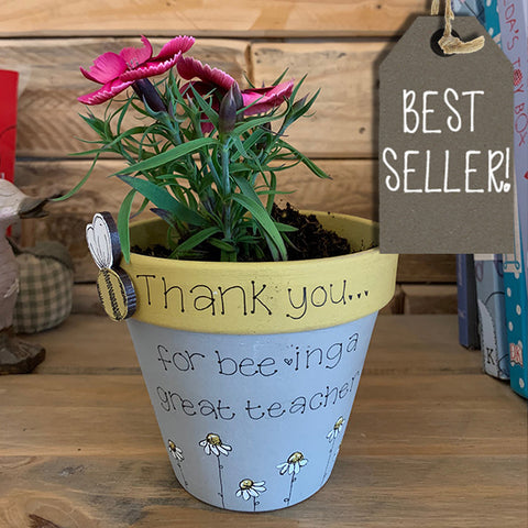Personalised Plant Pot - Bees & Daisies 10008