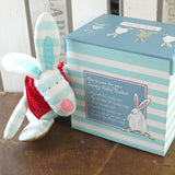 Rufus Rabbit Sensory Rabbit Boy in Treasure Box 2811