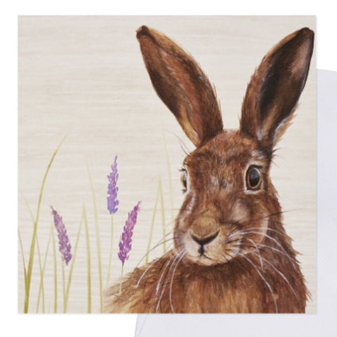 Greetings Card - Hare Lavender Card 9733