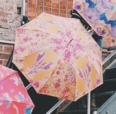 Powder Umbrella - Hare 6780