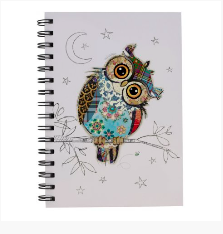 Bug Art Notebook - Owl 10245