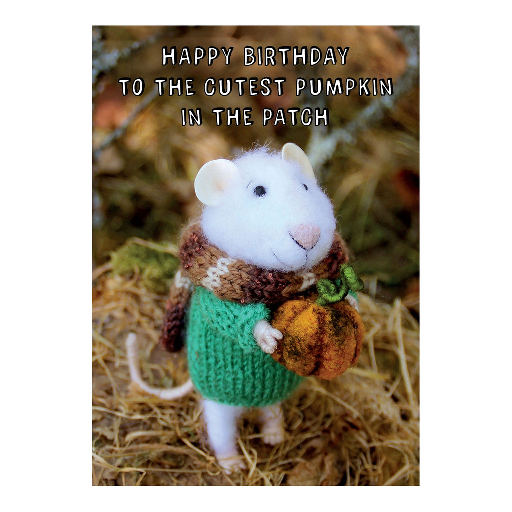 Tiny Squee Mousies Card - Happy Birthday Pumpkin 8123