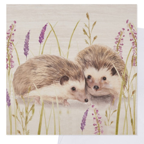 Greetings Card - Hedgehog Lavender Card 9734