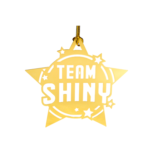 Team Shiny Ornaments (Set of 2)