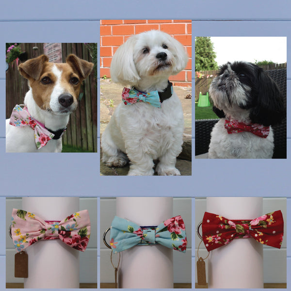Vintage Floral Print Dog Collars with Bow