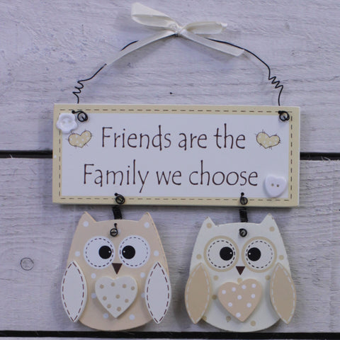 Wooden Hanging Sign - Cutie Owl - Friends are...