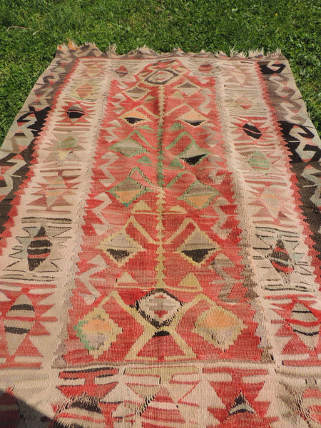 Tree of Life Motifs on Kilim rugs and Area Rugs