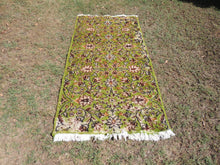 Green Area Rug with Beautiful Vintage Look