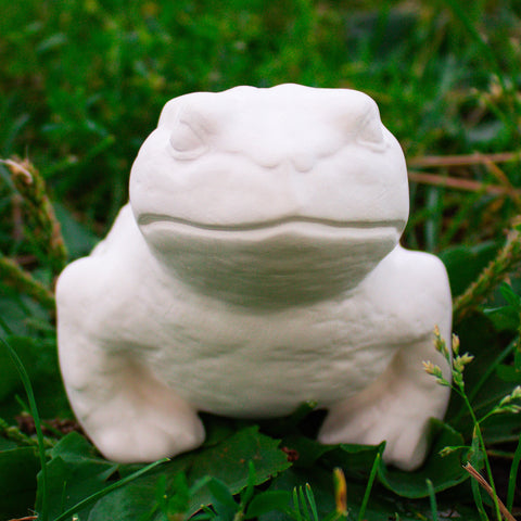 "Detailed Toad 4.75"" Ready to Paint Ceramic Bisque"