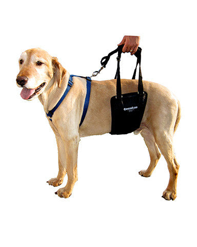 Dog Support Harness Sling