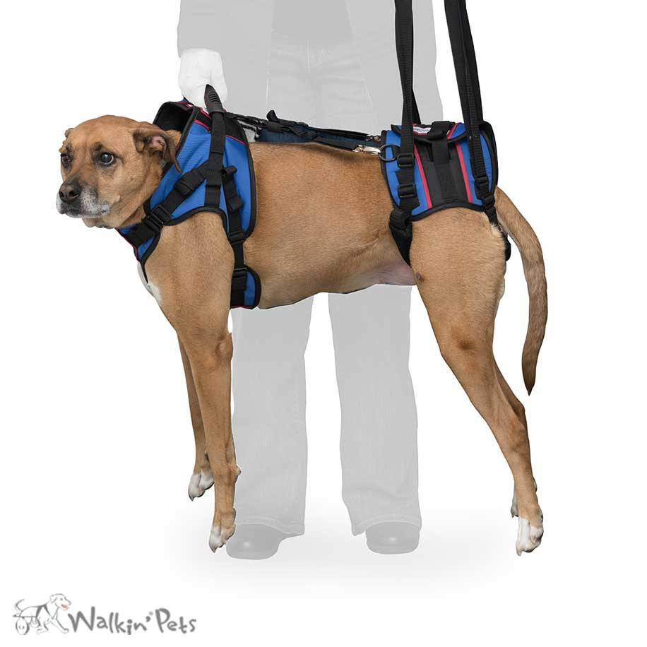 Walkn' Lift Combo Dog Harness - DOGsAGE