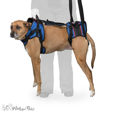 Walkn' Lift Combo Dog Harness