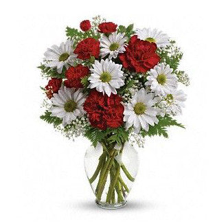 Daisy and Carnation Vase Arrangement