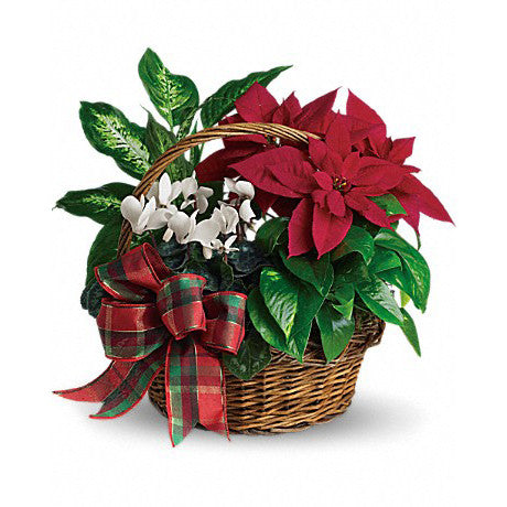Holiday Homecoming Basket Arrangement