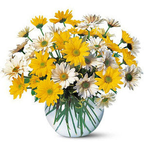 Cheerful Daisy Arrangement