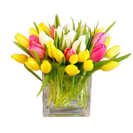 Simply Tulips Arrangement
