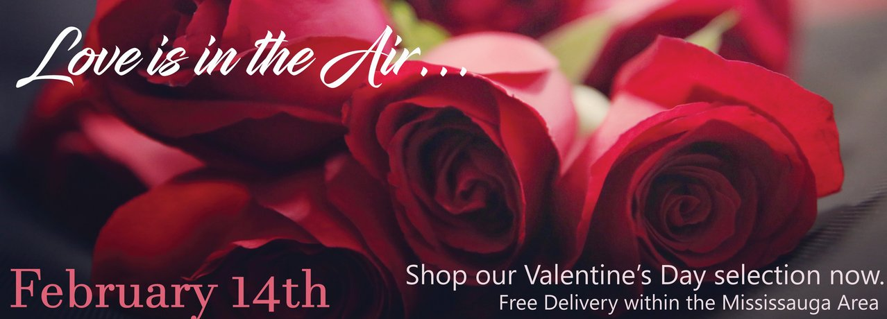 Shop our Valentine's Day selection now.