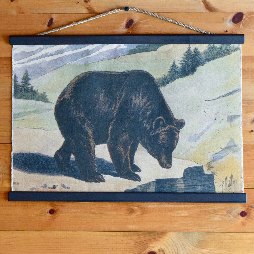 P. Mahler Chromolithograph Black Bear Wall Chart on Mountain Range