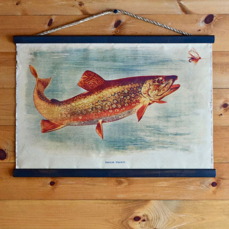 Brook Trout Wall Chart | Dartbrook Signature Collection