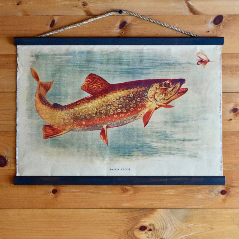 Vintage 1914 Brook Trout Illustration on Canvas Wall Chart